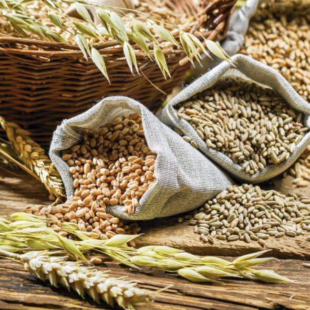 купить зерно для корма животных