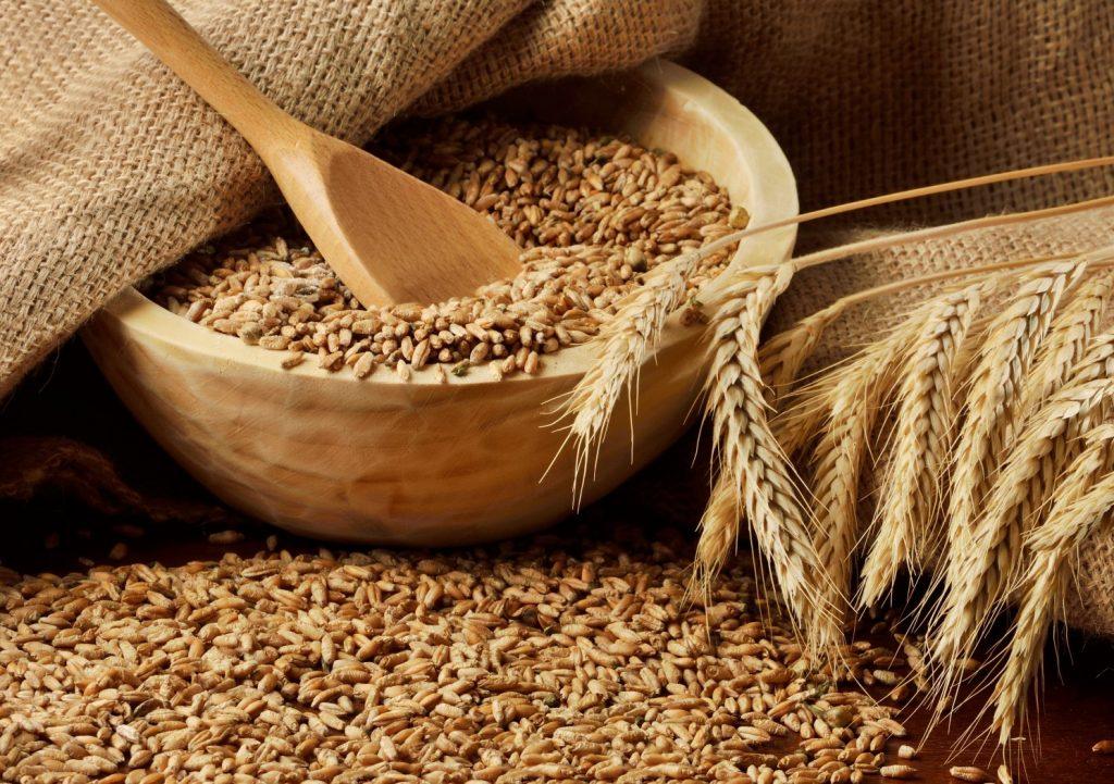 зерно для корма животным в москве