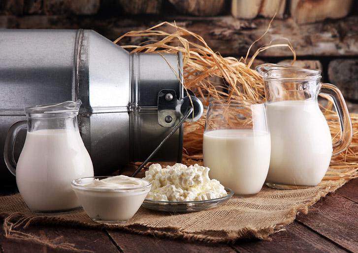 доставка фермерских молочных продуктов