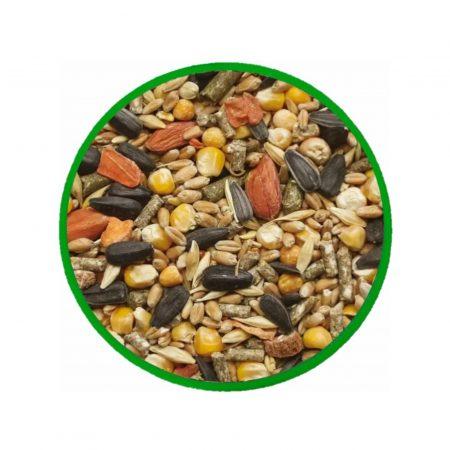 эко-корм для дегу и белки